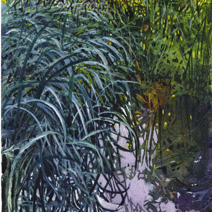 Picture of Reed bed