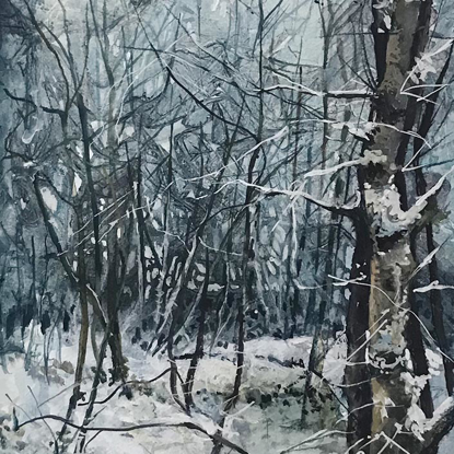 Picture of Digley Woods in Winter