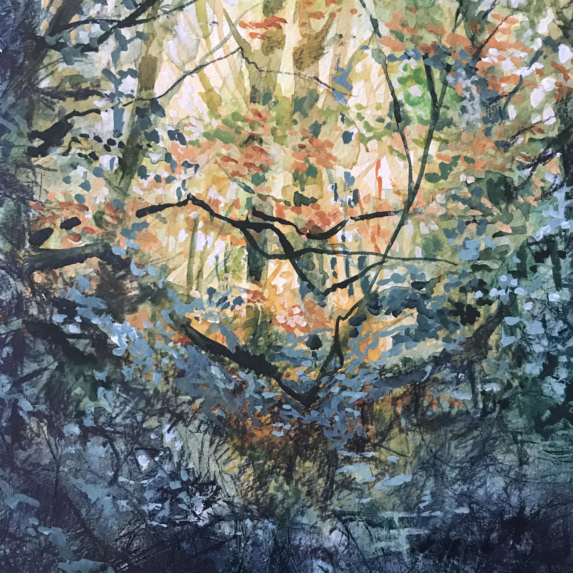 Picture of Autumn Woods