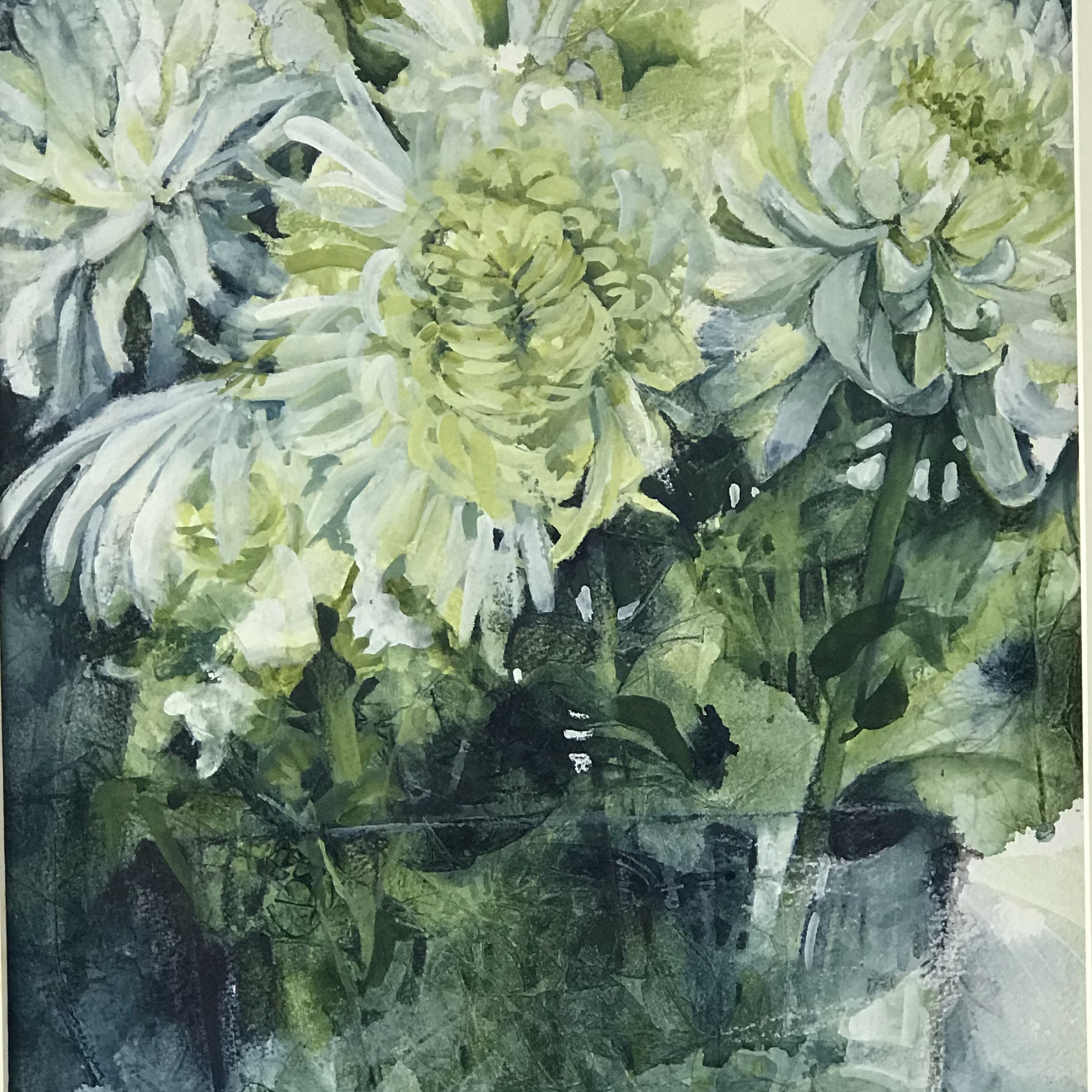 Picture of White Chrysanthemums